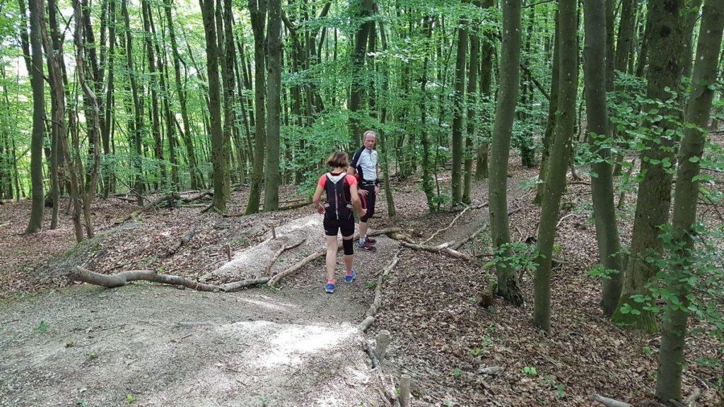 saarLANDlauf Etappe 3 – Gräfinthal – Böckweiler